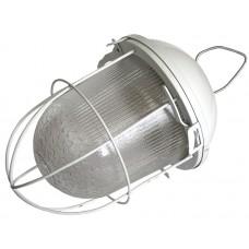 Светильник НСП 02 100 003 IP53 с решеткой Владасвет